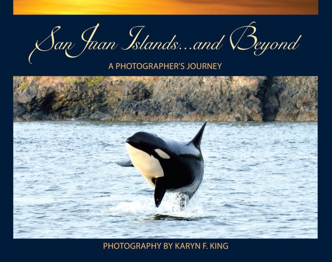 BOOK_final_coverSanJuanIslands_cvr_92212[1]